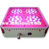 apollo 4 full spectrum led grow lights