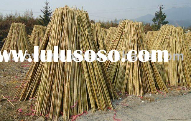 Natural bamboo pole bamboo cane bamboo stick best price & wholesale