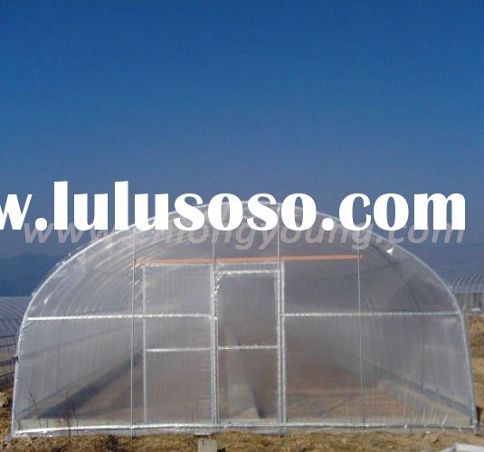 60m Long Agricultural Single Tunnel Film Agricutural Greenhouse Hot House