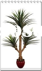 small artificial screw-pine tree